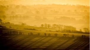 Trees cast long shadows through the mist and fog as it hangs in valleys on the Mendip Hills, Somerset at sunrise