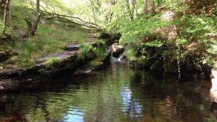The River Giedd in Cwmgiedd