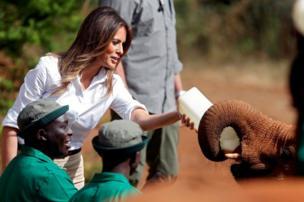 ميلانيا تطعم فيل