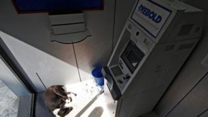 कोलकाता के एक एटीएम काउंटर में सोया कुत्ता