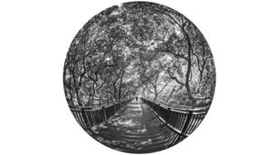 图辑,中国,摄影,艺术,鱼眼,台湾,文化