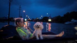 Una mujer y su mascota esperaron a que las rescataran desde un flotador inflable en medio de la calle.