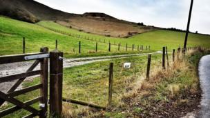 White Horse Hill, Uffington