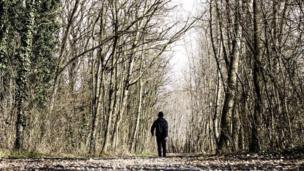 """Foto de un lector de BBC Mundo por el tema """"bosques"""""""