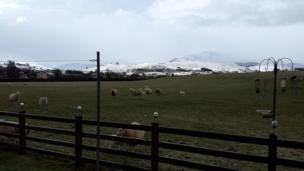 Eira ar y 'topie' // There's snow on them there hills