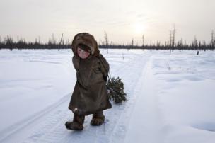فتاة تجمع الخشب في الثلج
