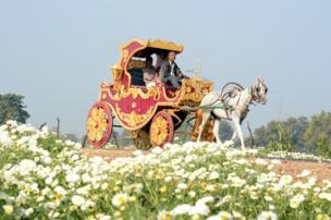 A carriage and flower garden