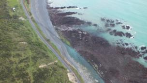 The uplift of seabed near Kaikoura