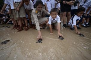 กิจกรรมนี้จัดขึ้นที่ศูนย์อนุรักษ์พันธุ์เต่าทะเลกองทัพเรือ อ.สัตหีบ จ.ชลบุรี ช่วงเช้าวันนี้ (26 ก.ค.)