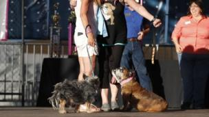 Megan Brainard (R) from Minnesota, and her dog Zsa Zsa, an English Bulldog and Yvonne Morones (L) and her dog Scamp, a mix breed, hug
