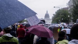 Protesters under umbrellas