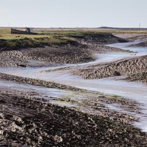 Somerset coastline