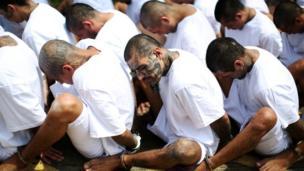 مجموعة من أفراد عصابة مارا سالفاتروتشا في دولة السلفادور