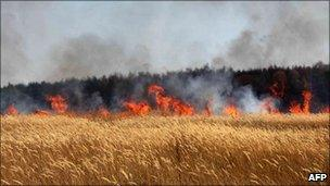 Flames are seen in a field at the edge of Voronezh, central Russia