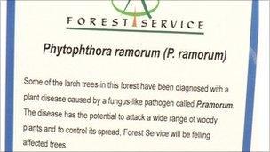 Tree warning