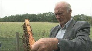 Ron Hoskins with bees