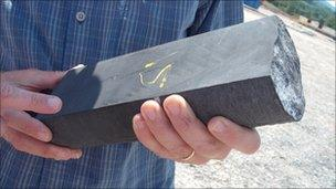 A core of shale