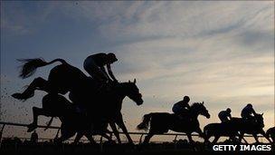 Horses jumping over a hurdle at sunset