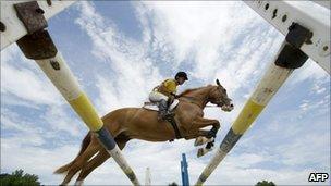 Horse jumping hurdle