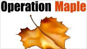 Operation Maple logo
