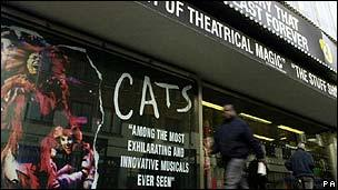 Cats at the New London Theatre