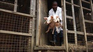 Rwandan farmer