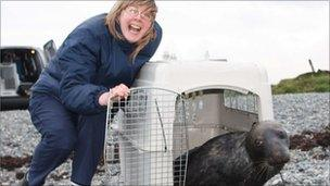 Cally Harris from the RSPCA's animal centre at Bryn y Maen