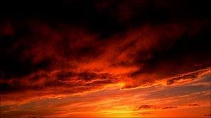Night fall. Pic: Eyewire