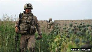 A US soldier walks through a field of poppies in Helmand Province, southern Afghanistan