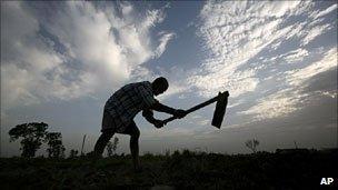 Farmer in Andhra Pradesh