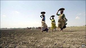 Women farm workers in Andhra Pradesh