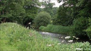 Norbury Park by George Sweetnam (from Surrey Wildlife Trust)