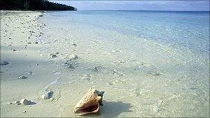 An unnamed beach in the Bahamas