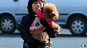 Dog, in booties, Beijing Jan 2011