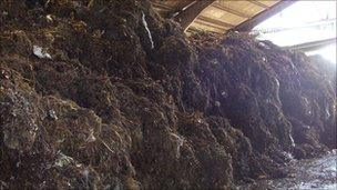 County Mulch composting