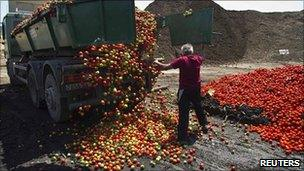 Discarded vegetables are unloaded in Nijar, in the southern Spanish region of Almeria, 8 June 2011.