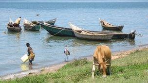 Lake Albert at Bugoma village