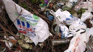 Bagiau Plastic