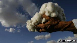 Hand holding raw cotton