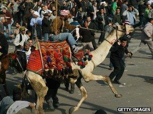 A supporter of Hosni Mubarak rides a camel through Tahrir Square (2 February 2011)