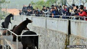 Journalists visit a bear farm of Guizhentang Pharmaceutical Co Ltd on 22 February, 2012 in Quanzhou, Fujian Province, China