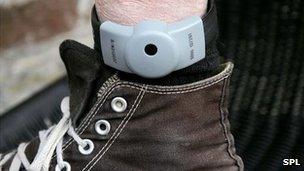 An electronic tag on a leg