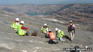 Excavators sitting outside of a mine