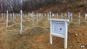 Graves of North Korean and Chinese soldiers