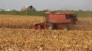 Harvest in Nebraska