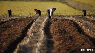 File photo: North Korean farmers, September 2011