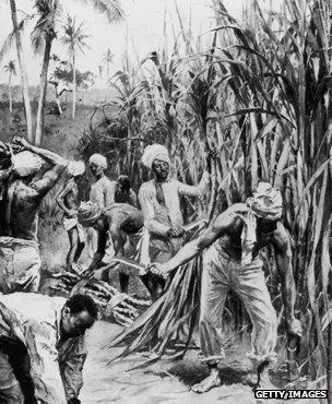 Artist's impression of a sugar plantation circa 1897