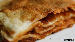 Lasagne - library picture