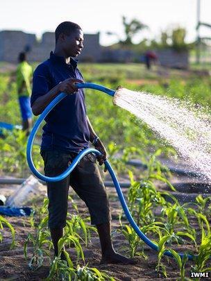Farmer watering crops, Ghana (Image: IWMI)