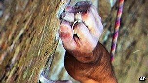 Kevin Jorgeson grips the surface